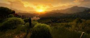 Thou shalt not deny the beauty of this game : witcher