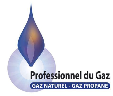 Modification De Qualification Professionnelle by Qualifications Rge Pg Quali