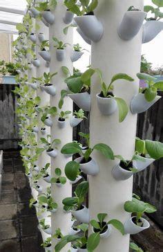 cool vertical garden ideas growing food  small yard vertical garden diy vertical