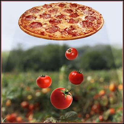 Pizza Ufo Flying Aliens Floating Gifs Saucer