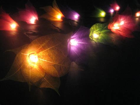 20 Multicoloured Battery Operated Star Flower Led String