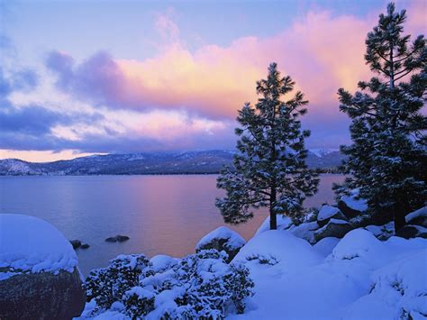 beautiful winter wallpapers design reviver web