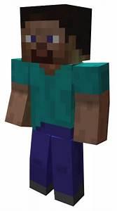 Image Minecraft Stevepng PlayStation All Stars Wiki