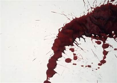 Bloody Blood Dripping Animated Vampire Water Dexter