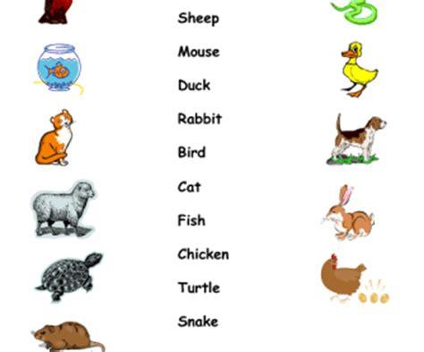 matching pets   names