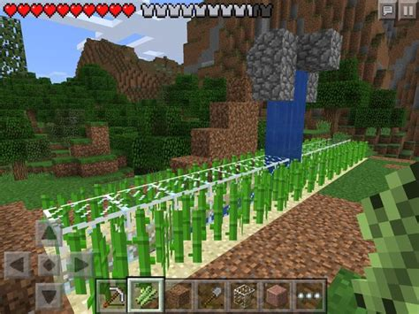 tutorialssugar cane farming official minecraft wiki