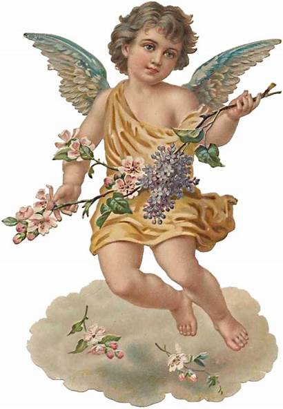 Angel Cherub Aesthetic Angels Victorian Angeles Sticker