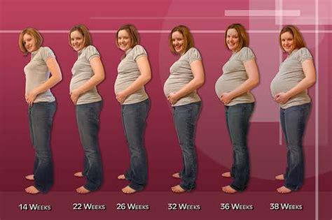 Janin Per Minggu First Week Pregnancy Health Information