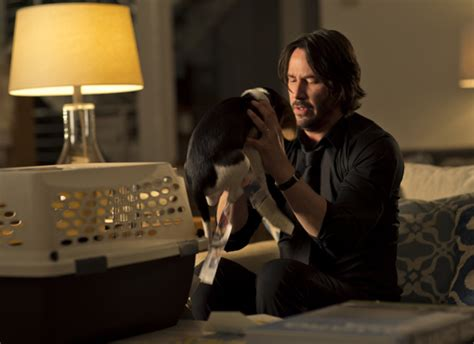 john wick film review keanu reeves rescues  action