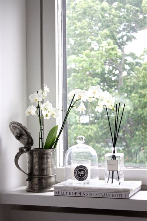 Plants For Window Sills by 25 Best Ideas About Window Sill Decor On