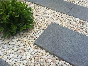 Cailloux Pour Cour : jardin moderne avec du gravier d coratif galets et plantes ~ Premium-room.com Idées de Décoration