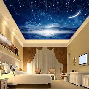 D star nebula night sky large suspended ceiling painted