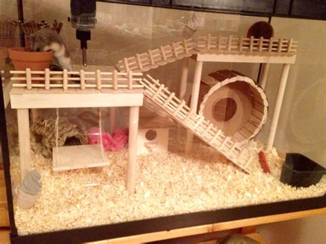 The 25+ Best Dwarf Hamster Toys Ideas On Pinterest