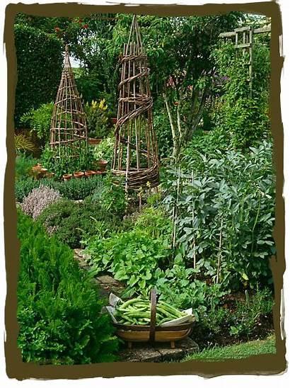 Garden Potager Fancy Veggie