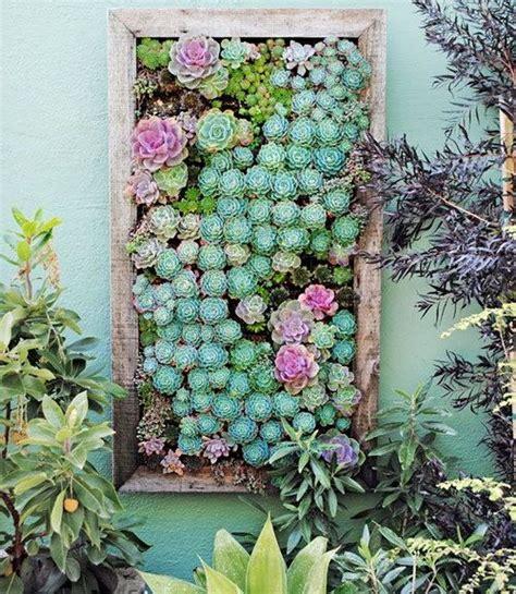 Vertical Succulent Garden Indoor by Creative Indoor And Outdoor Succulent Garden Ideas