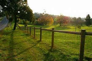 Attractive but economical fencing option for large dog pen for Attractive dog fence