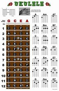 954 Best Ukulele  U0026 Guitar Images On Pinterest