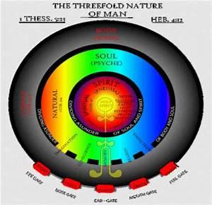 Body Soul Spirit Bible Diagram