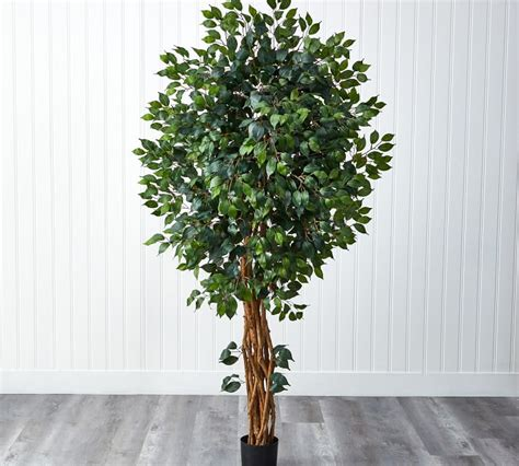 Faux Potted Palace Style Ficus Tree | Pottery Barn