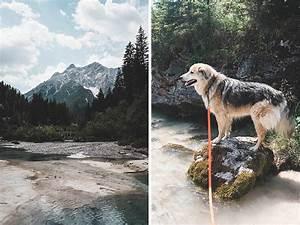 Urlaub Mit Hund Am Meer Italien : dolomiten suedtirol urlaub mit hund italien ~ Kayakingforconservation.com Haus und Dekorationen