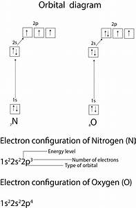 How U2019re Atomic Orbitals Filled With Electrons