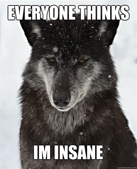 Wolf Memes - 45 very funny wolf meme pictures that will make you laugh