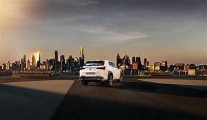 Lexus Ux Photo On Behance