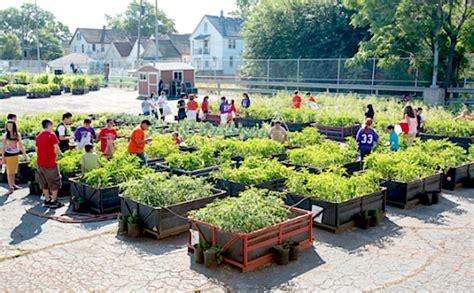 Community Gardens  Container Gardening