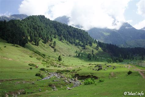 aru valley kashmir  photo  jammu  kashmir