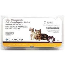 fvrcp vaccine cats feline ultranasal fvrcp vaccine 20 ds tray ultranasal