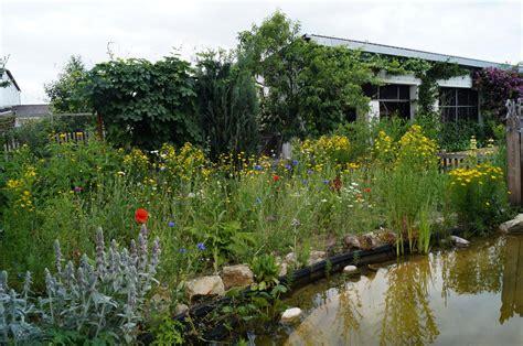 Darf Bienen Im Wohngebiet Halten by Bienen Im Garten Beautiful Bltenpracht Im Wohngebiet Bei