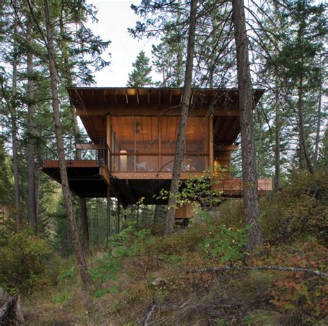 cottage  stilts  andersson wise architects