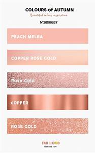 Color inspiration Archives - Fabmood | Wedding Colors ...