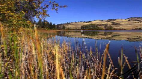 beautiful british columbia courtney lake merritt