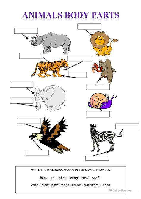 Animal Body Parts Worksheet  Free Esl Printable Worksheets Made By Teachers