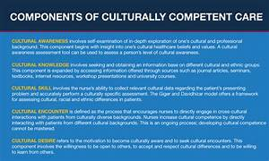 A Guide to Cult... Cultural Competency