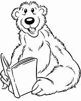 Bear Coloring Pages Colouring Animal Colour Animals Coloringpages1001 sketch template