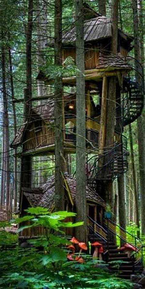 standout cabin designs blog