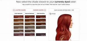 Natural Hair Color Chart I Tried Personalized Boxed Hair Dye And It Was A Game