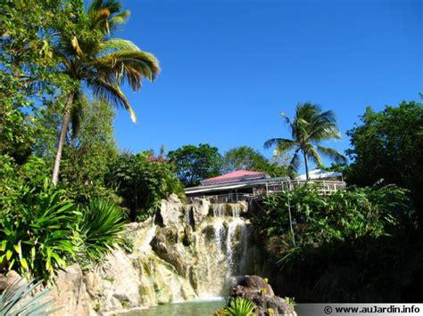 le jardin botanique de deshaies en guadeloupe
