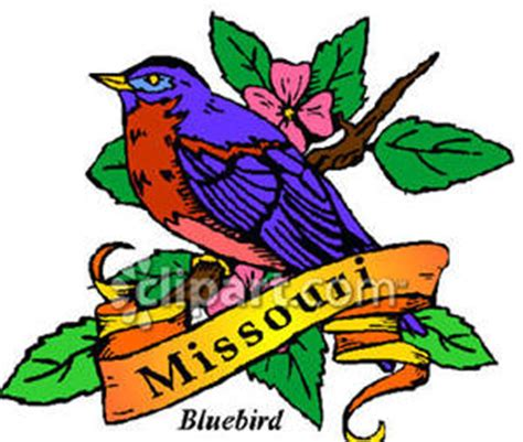 Cost Of Missouri Boating License by A Bluebird The State Bird Of Missouri Royalty Free