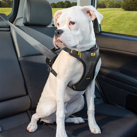 impact dog seat belt harness kurgo care  dogs