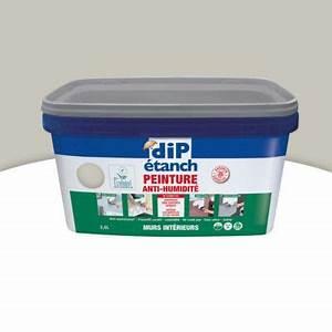 Traitement Anti Humidité : peinture traitement anti humidit gris perle 2 5 l castorama ~ Dallasstarsshop.com Idées de Décoration