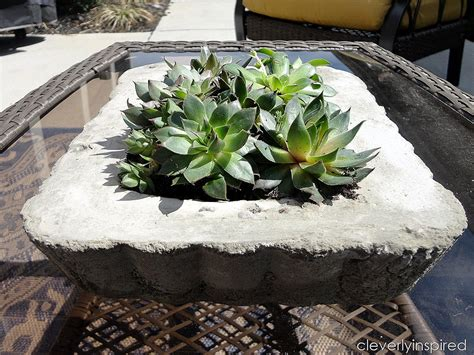 concrete planters diy concrete tray planter video tutorial cleverly inspired