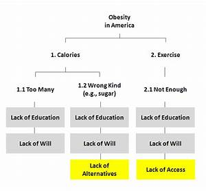 Obesity In America Essay Cheap Essay Help Online Obesity In America  Causes Of Obesity In America Essays Someone Who Does Assignment For Money