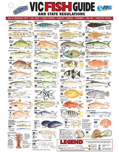 afn victoria fish id card vic australian fishing network
