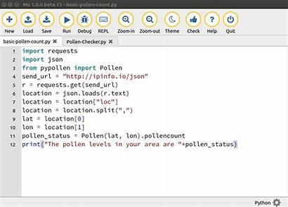 Pollen Python Projects Fun Basic