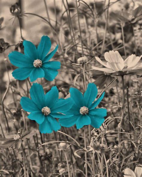 Brown Teal Blue Flowers Wall Art