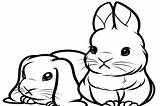 Bunny Coloring Pages Easter Cartoon Getdrawings Cat Pets Animals Coloringtop sketch template