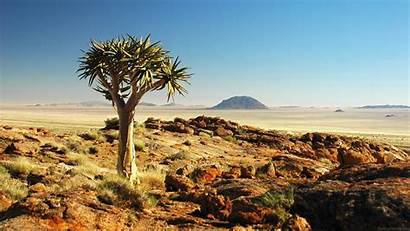 Desert Arizona Wallpapers 2560a 1440
